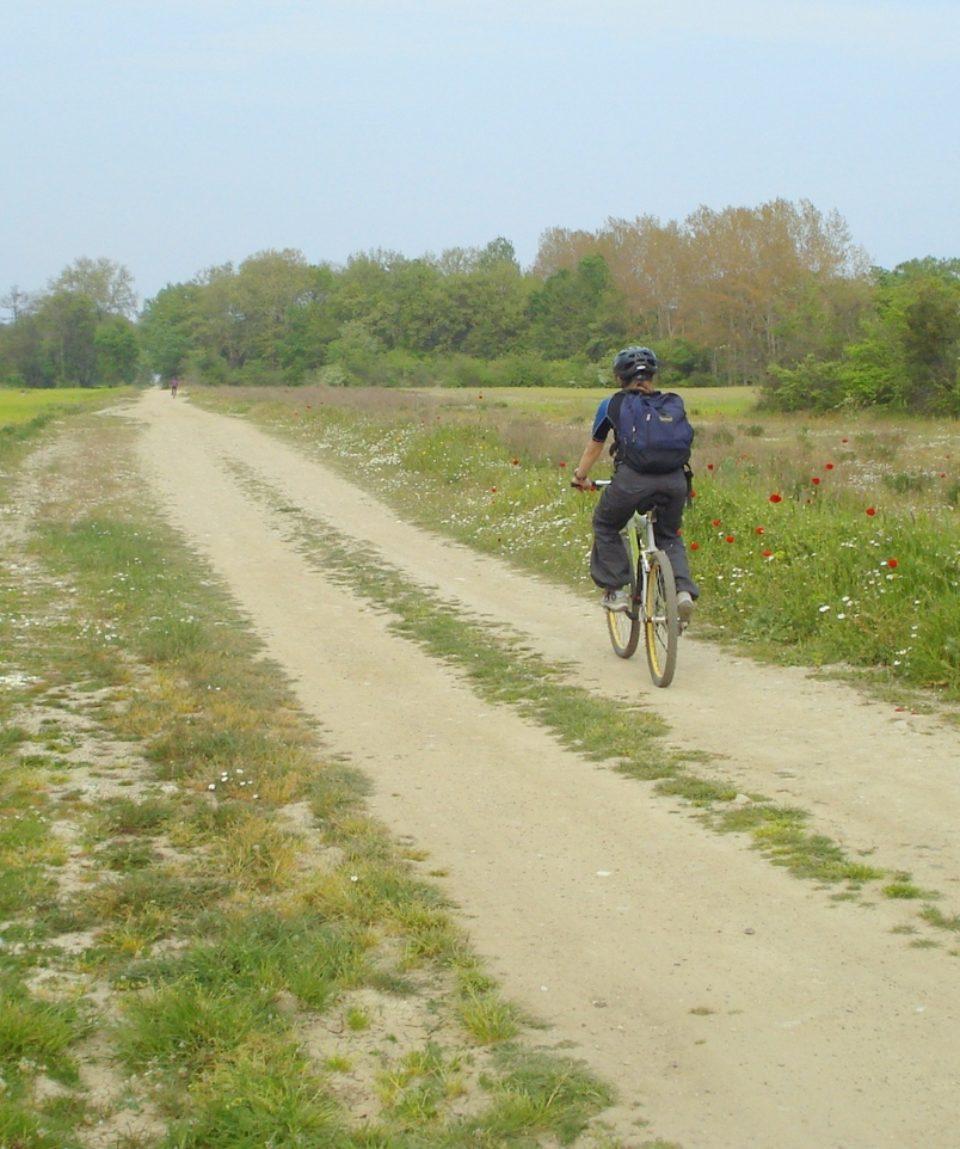 Biking-delta (10)