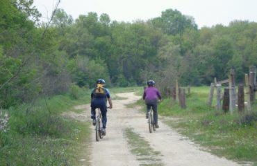 Biking-delta (8)