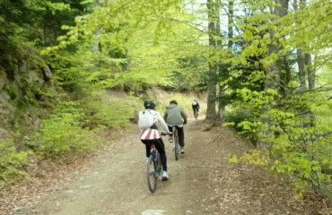 Mountain-Biking-Olympus (2)