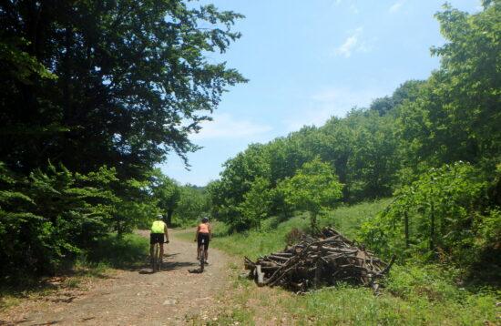 """Mt. Biking. """"Tzamia – Belmas – Anatoli – Megalovryso – Agia"""" e61d5e8f9e6"""