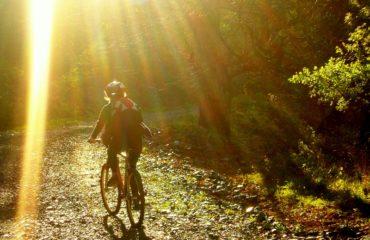 Mountain-biking (7)