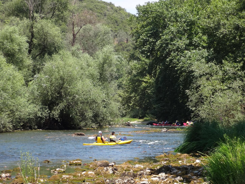 Κανό-Ποταμού (4)