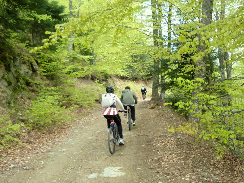 Ποδήλατο-βουνού (2)