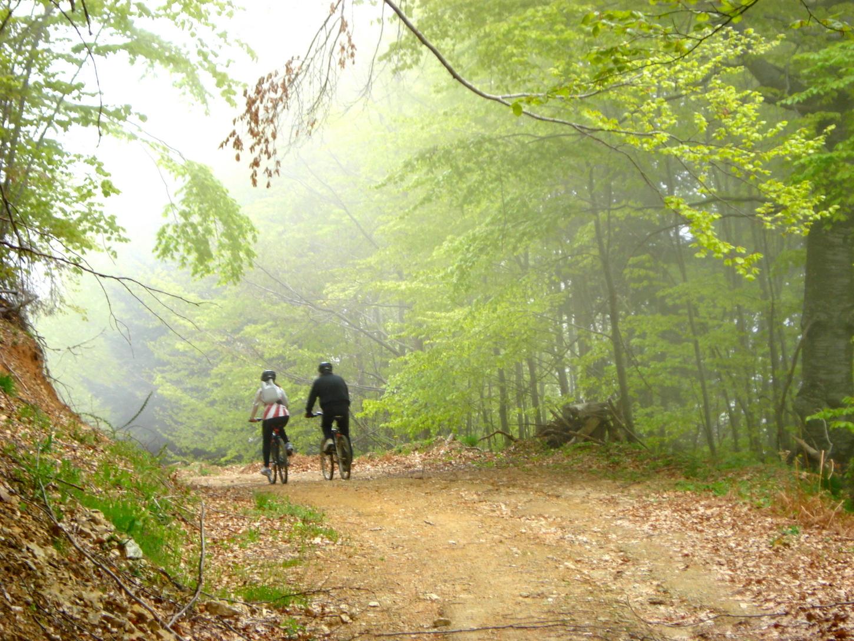 Ποδήλατο-βουνού (4)