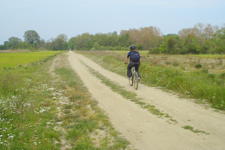 Ποδήλατο-δέλτα (10)