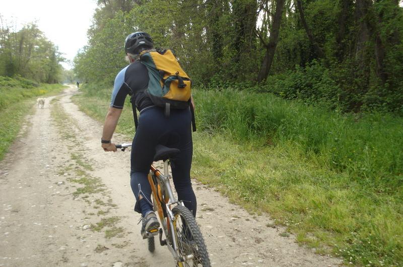 Ποδήλατο-δέλτα (14)
