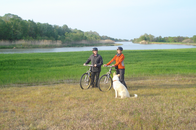 Ποδήλατο-δέλτα (18)