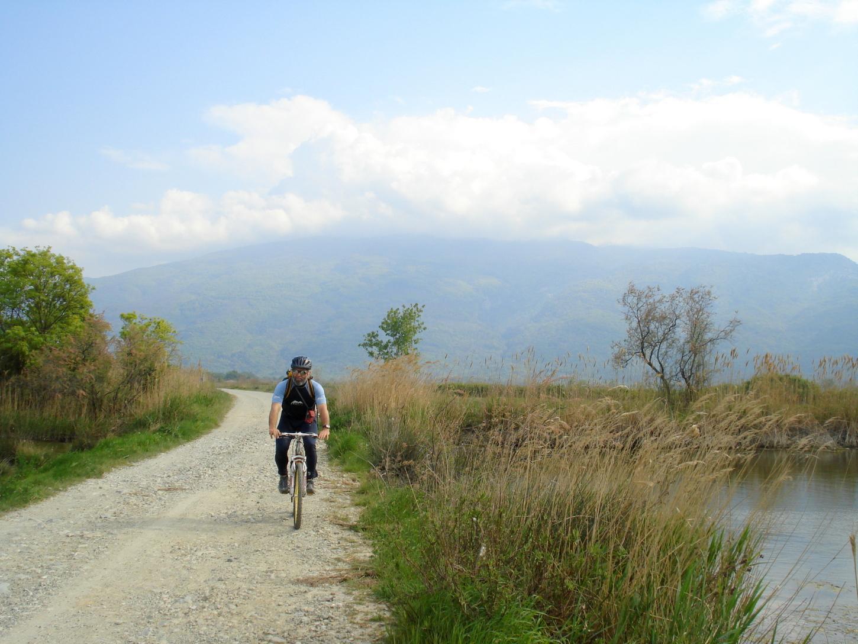Ποδήλατο-δέλτα (4)