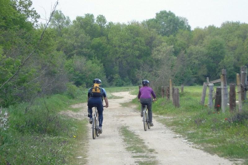 Ποδήλατο-δέλτα (8)
