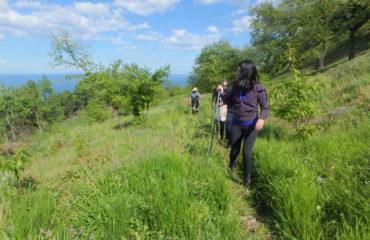Hiking-Kalypso