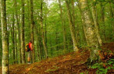 Hiking-Kissavos (25)