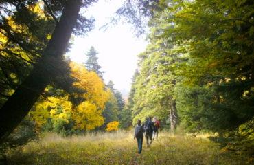 Hiking-Kissavos
