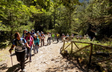 Hiking-Olympus (2)