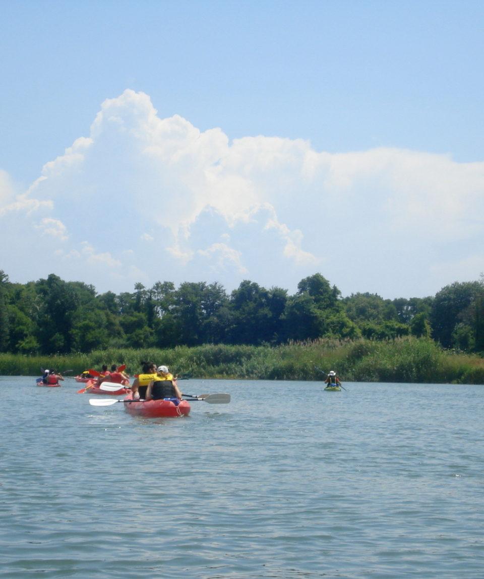 Canoeing (49)