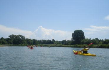Canoeing (50)