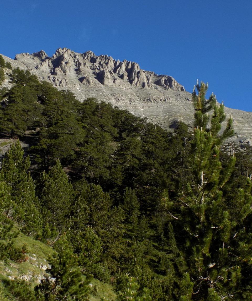 Mt-Olympus-ascent (8)